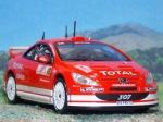 Peugeot_307WRC_Montecarlo_2004_101
