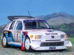 Peugeot_205_Turbo16EVO2_Montecarlo1986_01